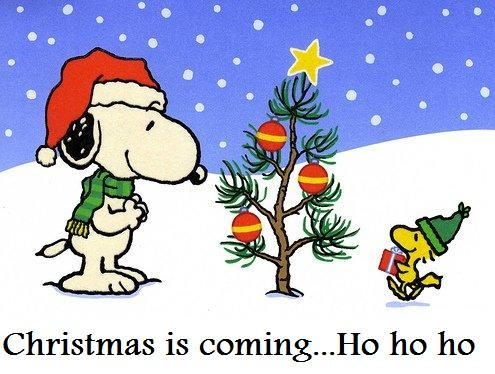 Merry Christmas Eve Images.Merry Christmas Eve Snoopy 4 Klip Joint Dog Grooming